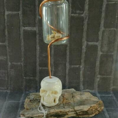 Bone Skull Mount