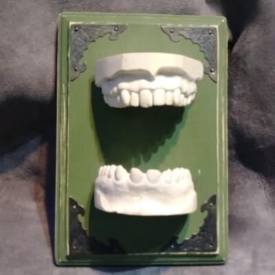 Feamed Dental Moulds Green Background