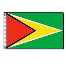 Guyana 3' x 5' Foot Flag