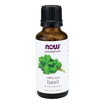 Now Essential Oils-Basil 100% Pure Oil 1 fl.oz