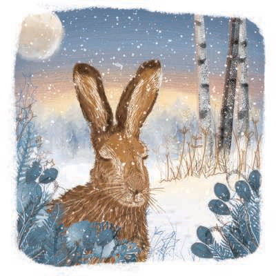Hare in the Woods