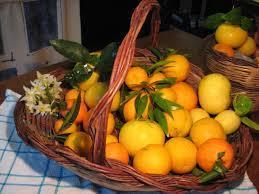MIX Clementine,  arance, limoni - 10 kg Agrumi misti