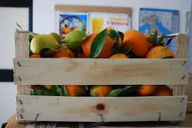 MIX Clementine, arance e limoni - 10 kg