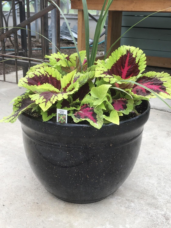 """15"""" Gold Speckled Black Planter Pot - SHADE"""