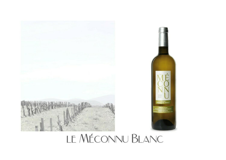 Le Méconnu Blanc 2019