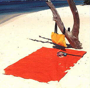 BeachThing Outdoor Mat/Bag