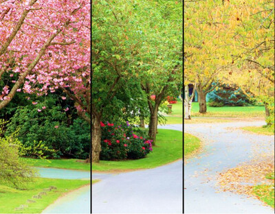 B. Spring, Summer and Fall Landscape Maintenance - Done Right!   $1865