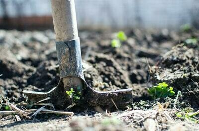 C. Gardener at your Service: Two Men Working for One, Two or Three Hours   $150/$295/$450