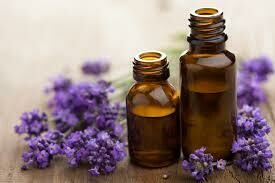 Lavender (Certified Organic) 10ml