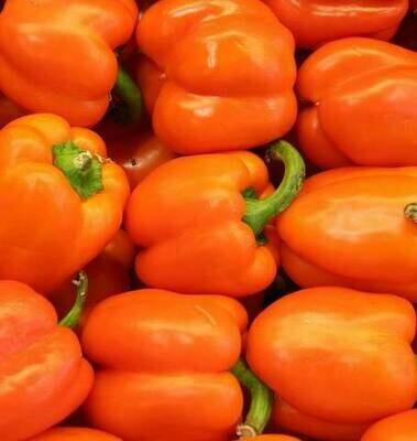 Orange Bell Peppers