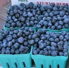Blueberries (1/2 Pint)