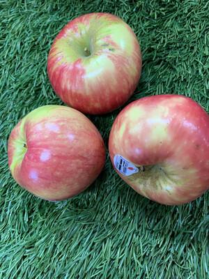 Apple-Honeycrisp