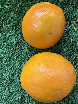 Orange-Naval
