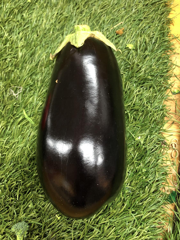Eggplant - Md/Large