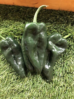 Peppers-Poblano
