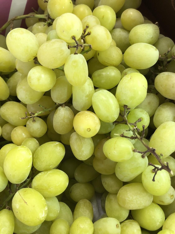 Grapes - Cotton Candy