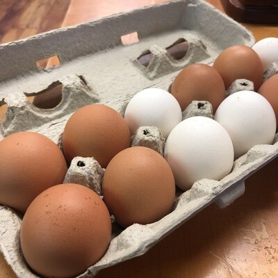 Locally Raised Eggs (One Dozen)
