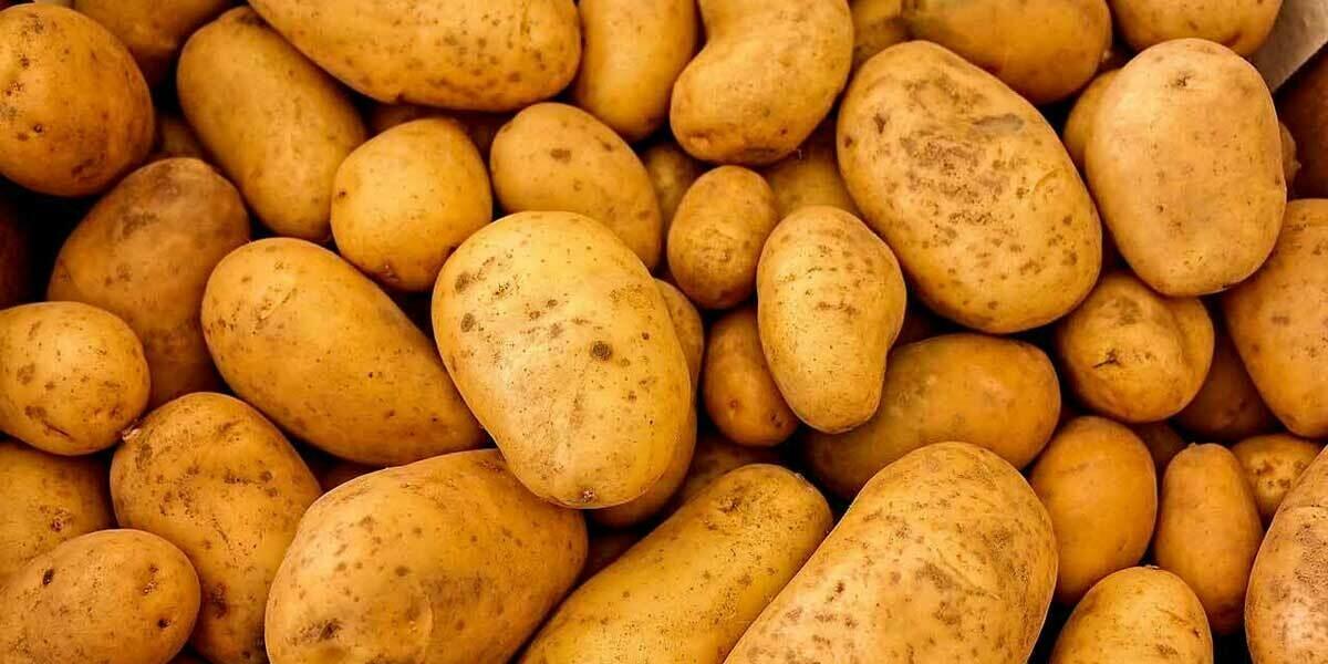 Estima Potatoes