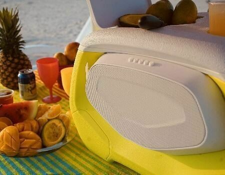 28 L Night light wheel cooler box with Bluetooth speaker and power bank