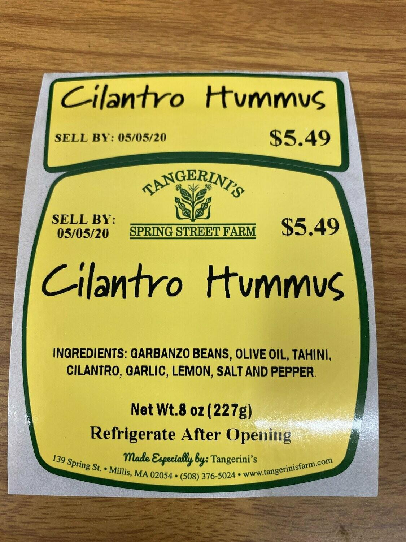 FP Cilantro Hummus