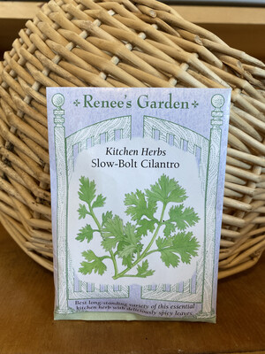 Slow-Bolt Cilantro   Renee's Garden Seed Pack   Past Year's Seeds   Reduced Price
