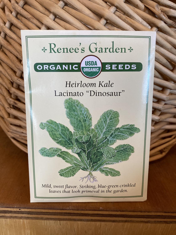 "Heirloom Kale Lacinato ""Dinosaur"" | Renee's Garden Seed Pack | Past Year's Seeds | Reduced Price"