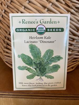 "Heirloom Kale Lacinato ""Dinosaur""   Renee's Garden Seed Pack   Past Year's Seeds   Reduced Price"