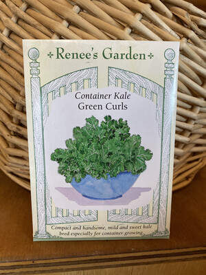 Container Kale Green Curls   Renee's Garden Seed Pack   Past Year's Seeds   Reduced Price