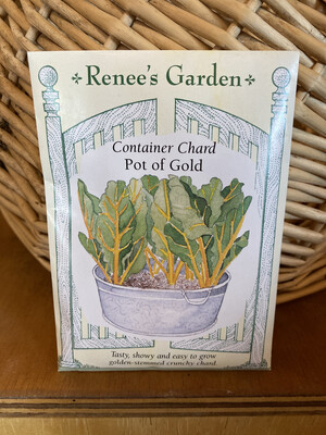 Container Chard Pot of Gold   Renee's Garden Seed Pack   Past Year's Seeds   Reduced Price