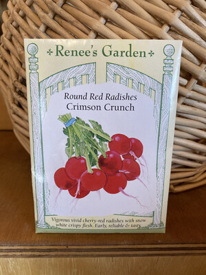 Round Red Radishes Crimson Crunch   Renee's Garden Seed Pack   Past Year's Seeds   Reduced Price