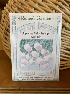 Japanese Baby Turnips Mikado   Renee's Garden Seed Pack   Past Year's Seeds   Reduced Price