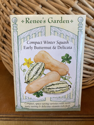 Compact Winter Squash Early Butternut & Delicata   Renee's Garden Seed Pack   Past Year's Seeds   Reduced Price