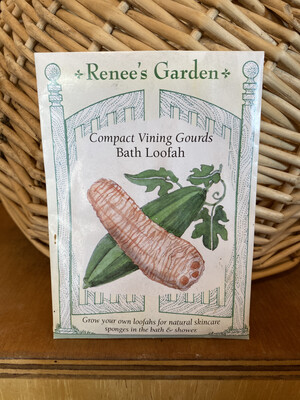 Compact Vining Gourds Bath Loofah   Renee's Garden Seed Pack   Past Year's Seeds   Reduced Price