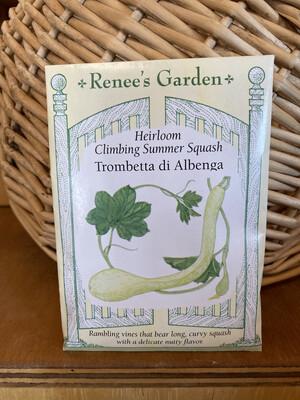 Climbing Summer Squash Trombetta di Albenga   Renee's Garden Seed Pack   Past Year's Seeds   Reduced Price