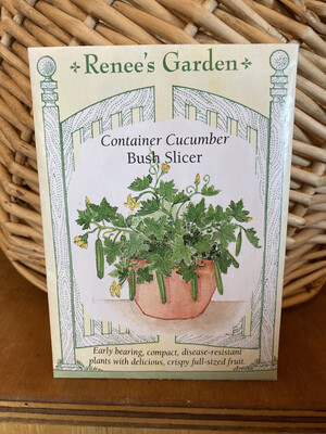 Container Cucumber Bush Slicer   Renee's Garden Seed Pack   Past Year's Seeds   Reduced Price