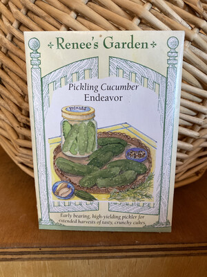 Pickling Cucumber Endeavor   Renee's Garden Seed Pack   Past Year's Seeds   Reduced Price