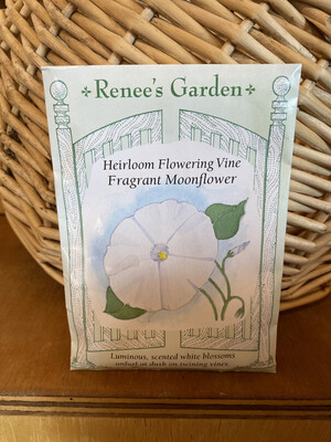 Heirloom Flowering Vine Fragrant Moonflower   Renee's Garden Seed Pack   Past Year's Seeds   Reduced Price