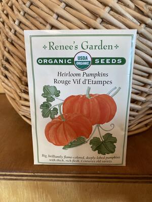 Heirloom Pumpkins Rouge Vif d'Etampes   Renee's Garden Seed Pack   Past Year's Seeds   Reduced Price