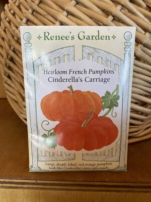 Heirloom French Pumpkins Cinderella's Carriage   Renee's Garden Seed Pack   Past Year's Seeds   Reduced Price
