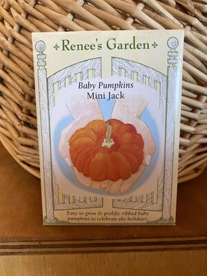 Baby Pumpkins Mini Jack   Renee's Garden Seed Pack   Past Year's Seeds   Reduced Price
