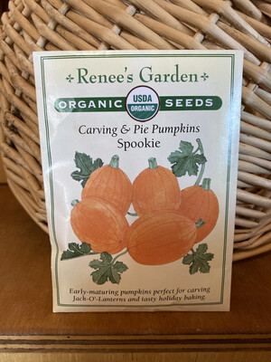 Carving & Pie Pumpkins Spookie   Renee's Garden Seed Pack   Past Year's Seeds   Reduced Price
