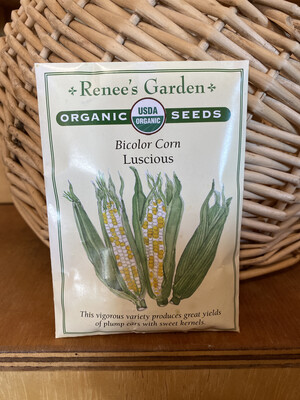 Bicolor Corn Luscious   Renee's Garden Seed Pack   Past Year's Seeds   Reduced Price