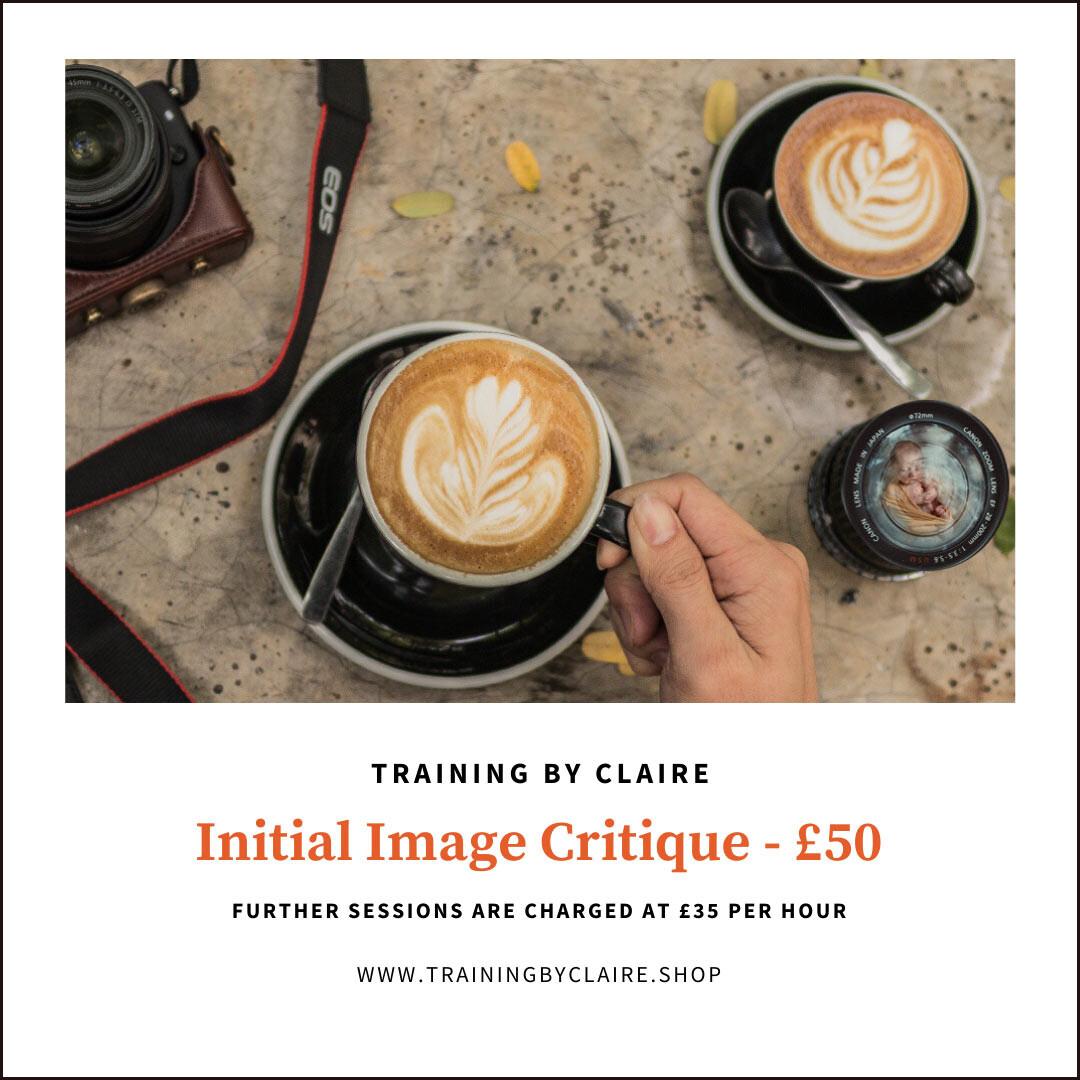 Initial Image Critique