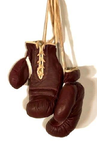 1930's Vintage Boxing Gloves by J C Higgins