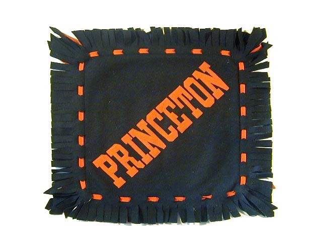 1910's Princeton University Felt Pillow Cover with Leather University Crest