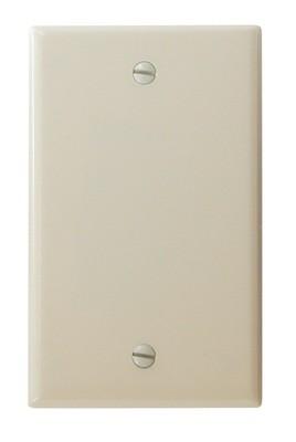 Blank Wall Plate - Ivory