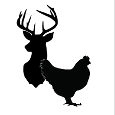 Hens & Stags