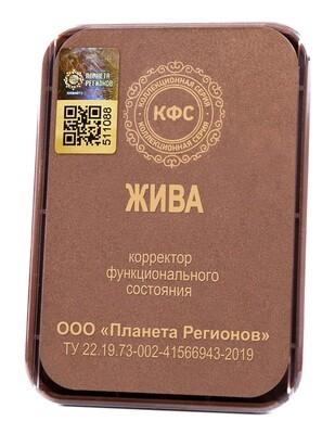 КФС «Жива» с 5-м Элементом / CFS «Zhiva»
