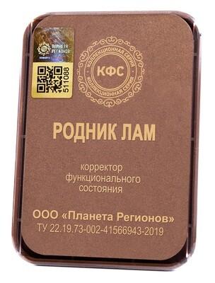 КФС «РОДНИК ЛАМ» с 5-м Элементом / CFS