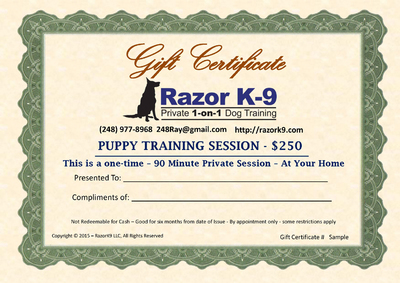 Puppy Session Gift Certificate